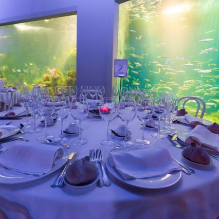 Sala Maremagnum con mesas redondas - Casa de los Peces